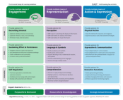new udl guidelines
